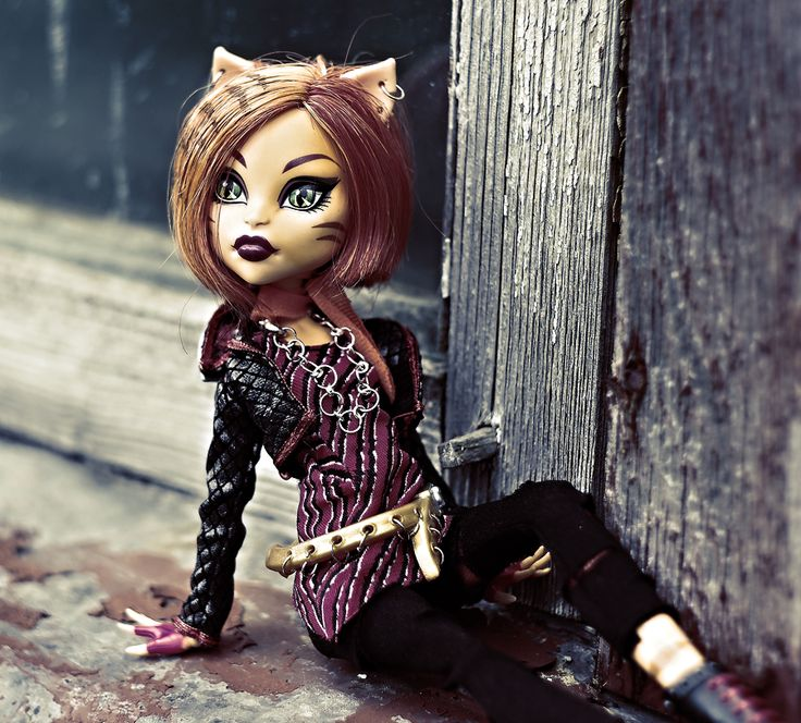 26 best images about toralei on pinterest her hair doll - Monster high toralei ...