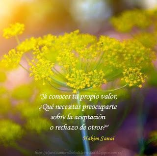 """""""Si conoces tu propio valor, ¿Qué necesitas preocuparte sobre la aceptación o rechazo de otros?""""  · El Jardín Amurallado de la Verdad ·"""