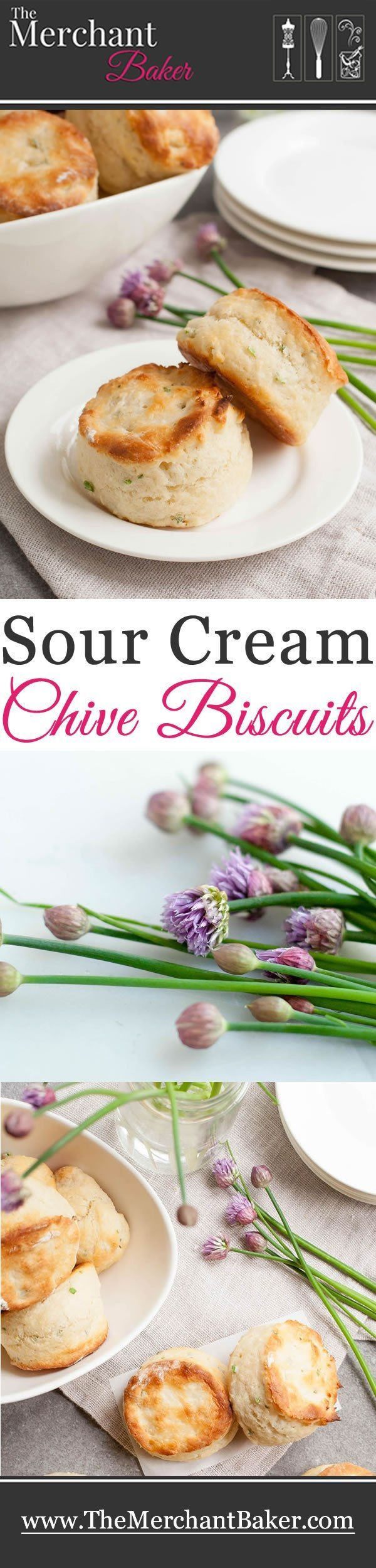 Sour Cream Chive Biscuits. Savory biscuits that are light and fluffy with the mild tang of sour cream that pairs so perfectly with fresh chives.