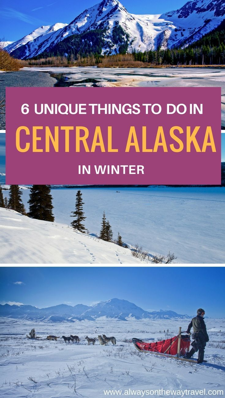 If you are planning to visit Central Alaska in winter, check out this list of unique things to do there.