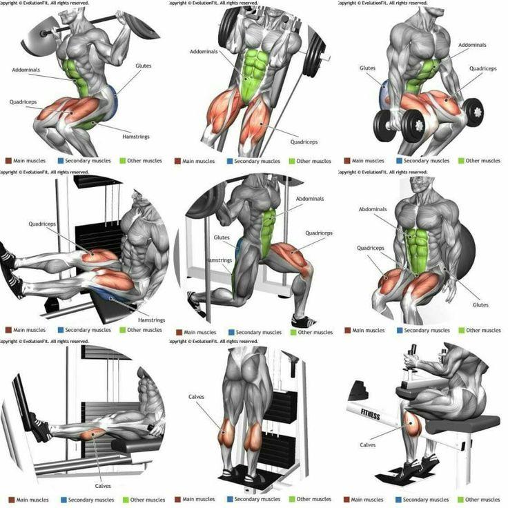 Lower body weight training