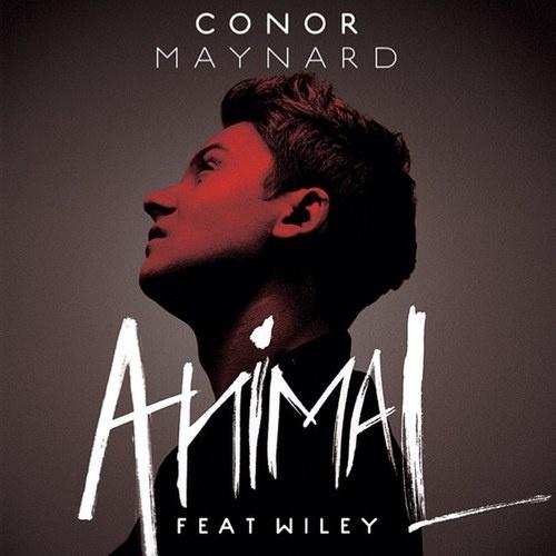Conor Maynard...love this song!