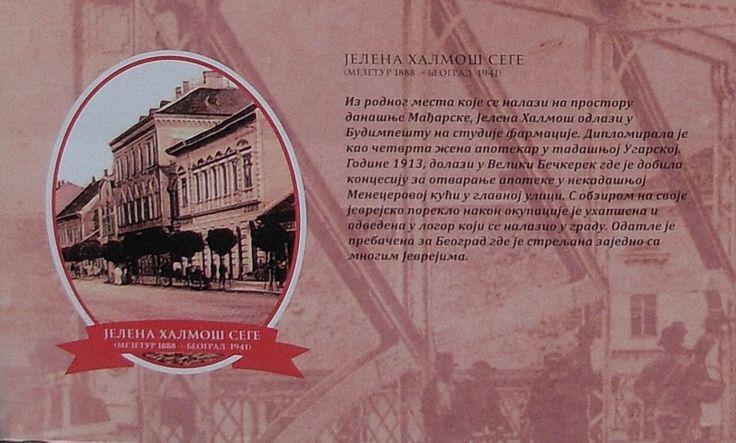 #JelenaHalmošSege (1888 - 1941) /Izvor: Izložba na trgu/ #Zrenjani #nagybecskerek https://flii.by/file/g50w0js0o6c/