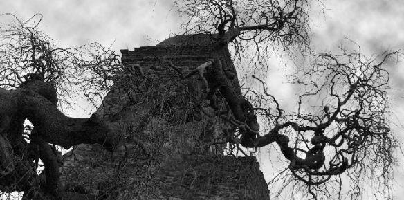 creepy tree Creepy Wiki: 70 Spooky Articles from Wikipedia.com