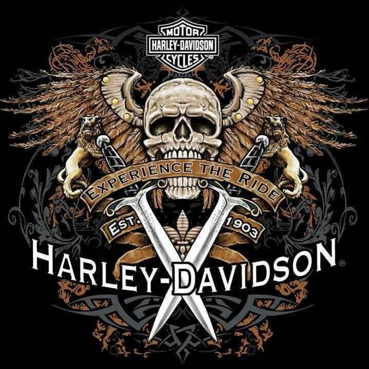 Harley Davidson!!!                                                                                                                                                                                 Más