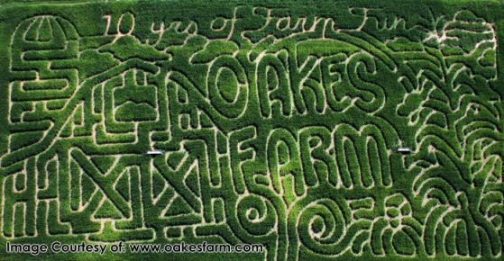 Oakes Farm Corn Maze & Pumpkin Patch – Knoxville, TN