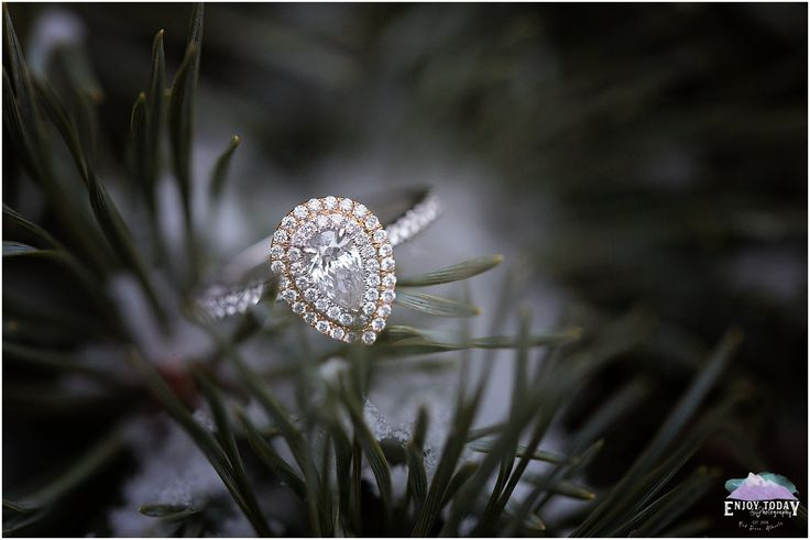 Engaged | Diamond Ring | White Gold | Rose Gold | Ice | Winter | Enjoy Today Photography