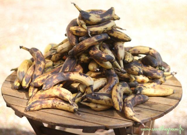 Que faire avec des bananes trop mûres ? De nombreuses personnes jettent les bananes trop mûres alors qu'elles sont coméstibles et délicieuses.