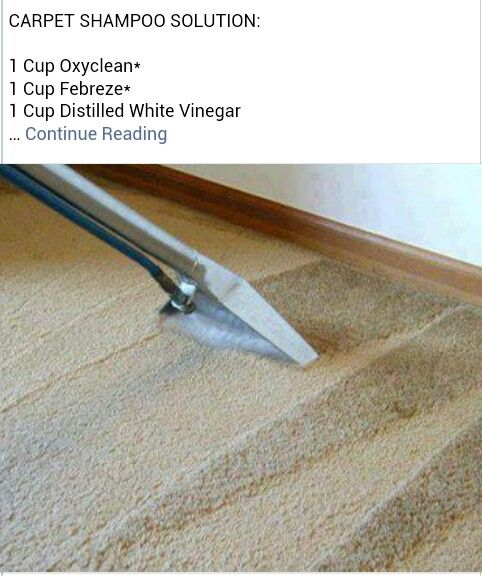 Carpet Cleaner Home Pinterest Carpets Homemade And