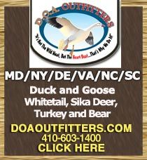 The snow goose hunting in Maryland this past year was tremendous! This coming season is guaranteed to be more of the same – book now for Snow Goose Hunting MD starting in November in many states including Maryland, Virginia, North Carolina, Vermont, New York & Delaware. Snow Goose hunting Maryland. It is about to get ugly.  TO BOOK A HUNT KEEP IT SIMPLE. JUST CALL JOE ON HIS CELL PHONE AT 410-603-1400 or 315-889-1790.