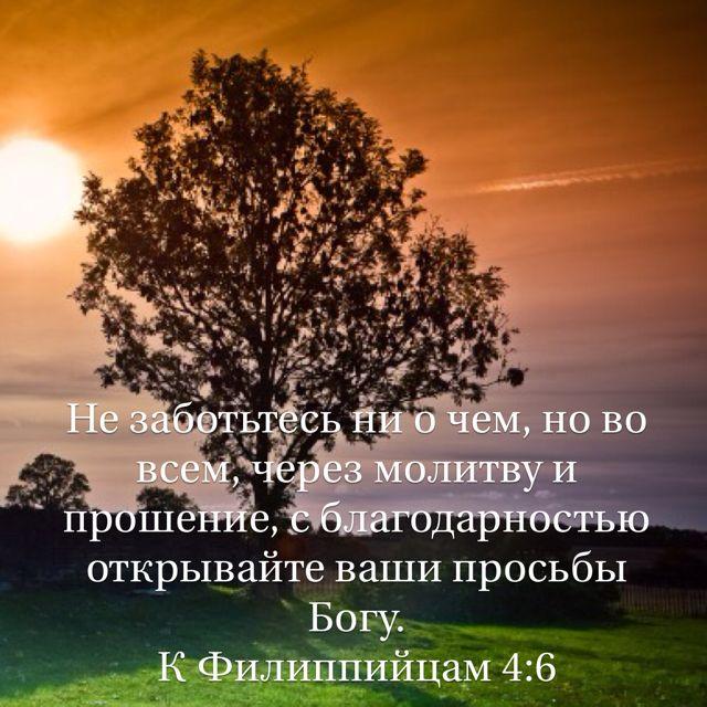 6 Не заботьтесь ни о чем, но во всем, через молитву и прошение, с благодарностью открывайте ваши просьбы Богу. (К Филиппийцам 4:6 RSZ)