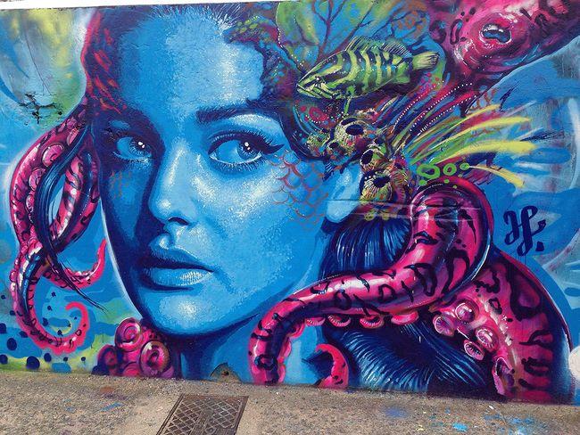 Street Art Par Valdi Valdi - Florianopolis (Bresil)