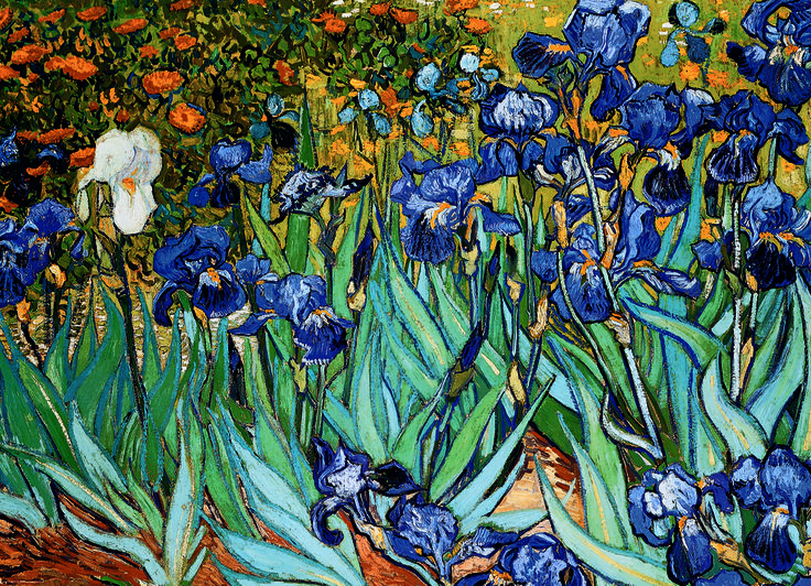 EuroGraphics Irises by Vincent Van Gogh 1000-Piece Puzzle. As were many of Van Gogh's works, Irises were influenced by Japanese ukiyo-e woodblock prints. In 1987 Irises became the most expensive painting ever sold.
