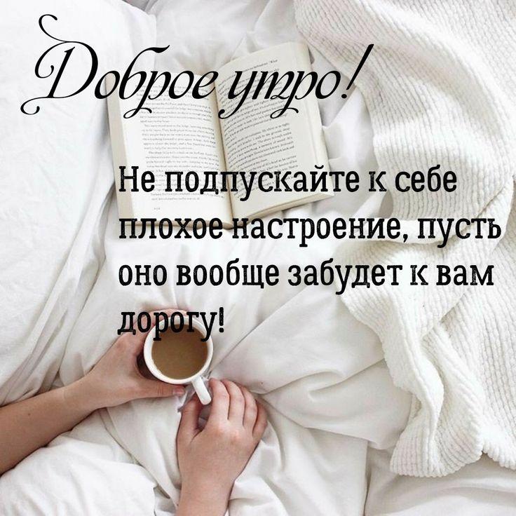 афоризмы с пожеланием доброго утра кошки