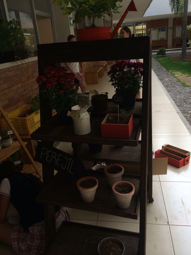 Esta es la jardinera por atras  Antonella Masciarelli