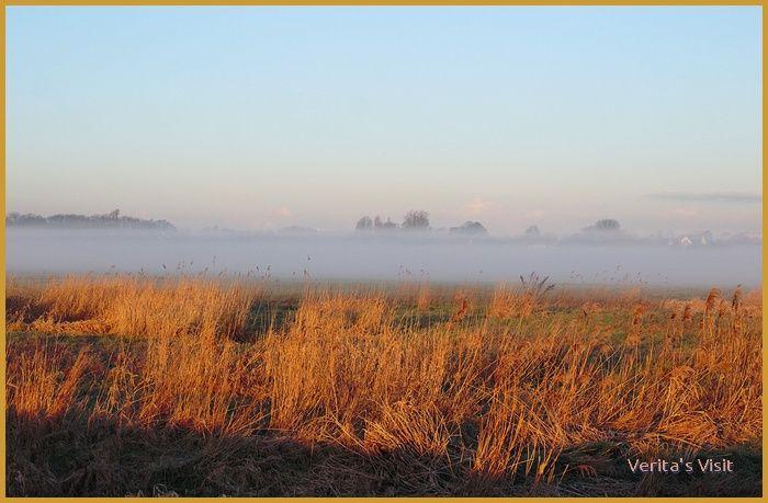 08:00 AM, February 2016, Leidschendam, Holland. The mist is just clearing. #Dutch #landscape http://veritasvisit.nl