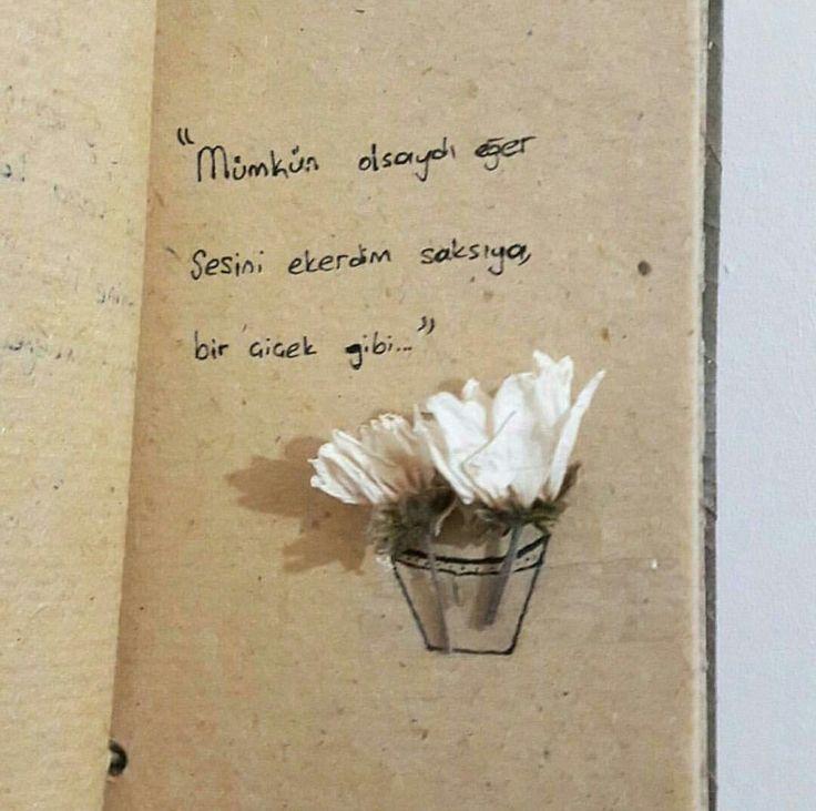 Mümkün olsaydı eğer, Sesini ekerdim saksıya, bir çiçek gibi...#sözler #anlamlısözler #güzelsözler #manalısözler #özlüsözler #alıntı #alıntılar #alıntıdır #alıntısözler #şiir #edebiyat