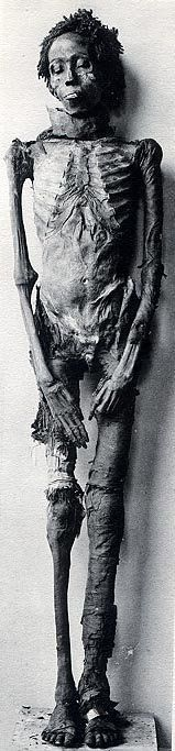 mummy of Maihirpre Akenaten Bluehorse