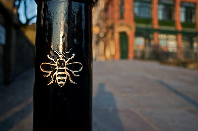 Manchester bee.