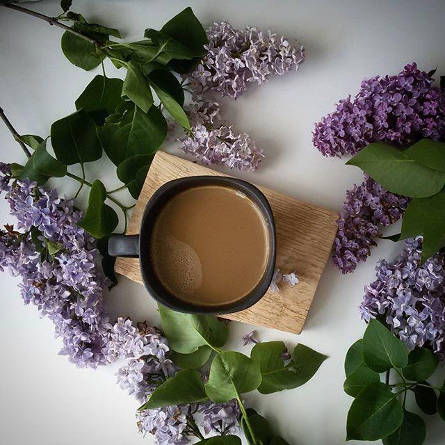 Ostatni bez z ogrodu.... #bliss#coffee#coffeandseasons #tv_living #tv_stilllife#momentsofmine #nothingisordinary#live_folk #live_nature#livefolk#thatsdarling#main_vision #transfer_visions#instadaily#instalive #instalove#vasco_gallery#vascodaily#photooftheday#inspocafe #coffenclothes#flatlay #qualitytime#snap_ish