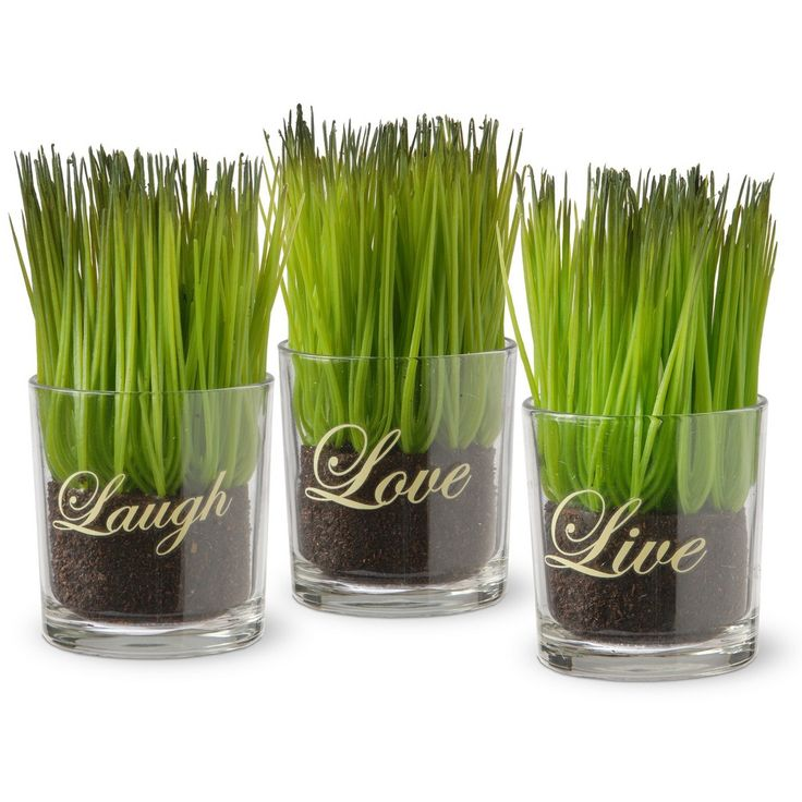 3-Piece Sprout-Filled Glass Artificial Assortment Green - National Tree Company