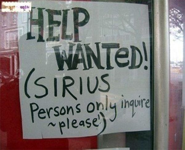 30 Hilarious Help Wanted Ads That Make Unemployment Seem Appealing