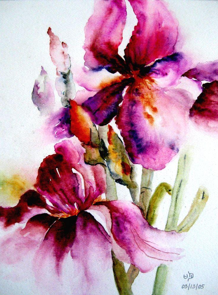 Watercolor Iris Google Search Pintura Aquarela