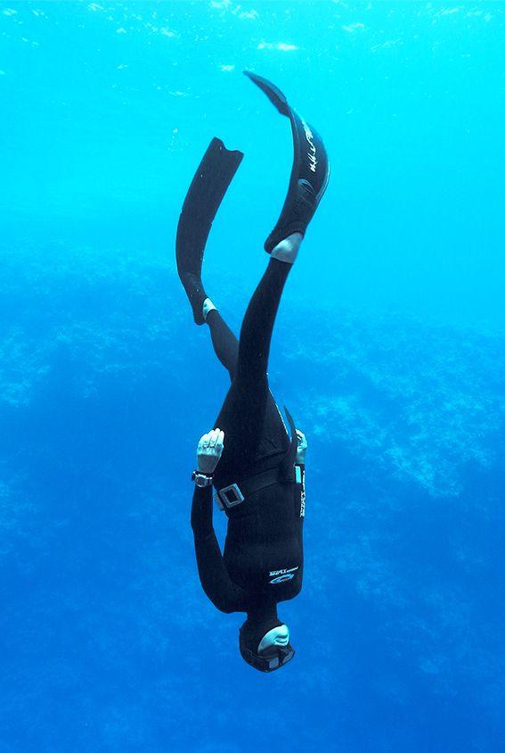 Picture Freediving Hledat Googlem Freediving Pinterest