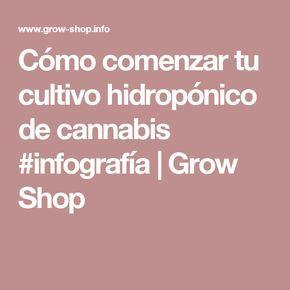 Cómo comenzar tu cultivo hidropónico de cannabis #infografía | Grow Shop