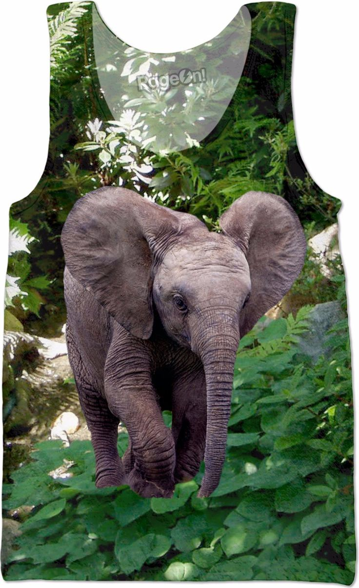 Check out my new product https://www.rageon.com/products/elephant-and-jungle-tank-top?aff=BWeX on RageOn!