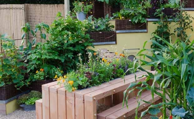 32 best garden design and gardening ideas images on Channel 7 home and garden