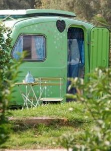 Vintage Camper: Vintage Trailers, Campers Trailers, Crafts Rooms, Camping, Green Campers, Travel Trailers, Vintage Green, Pot Sheds, Vintage Campers