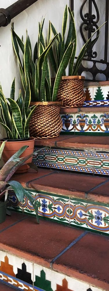 Tiles and stairs again. nice container garden