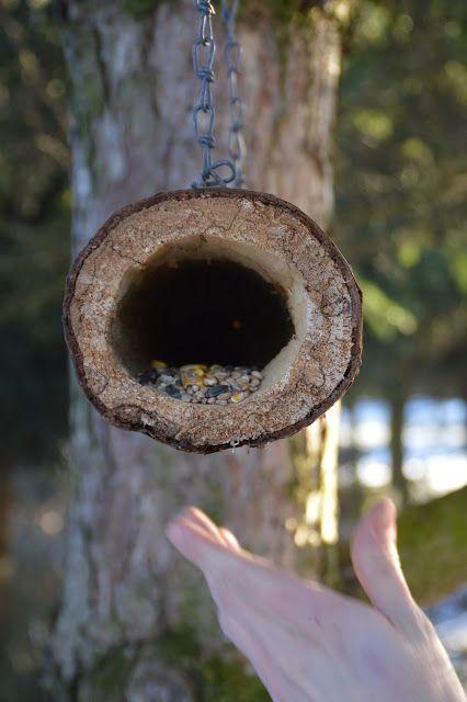 bosy dom: Karmniki dla ptaków DIY