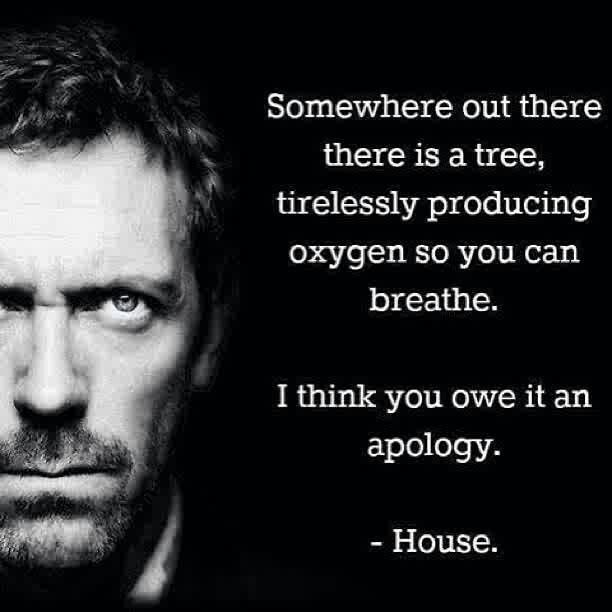 """Somewhere out there there is a tree, tirelessly producing oxygen so you can breathe. I think you owe it an apology."" Dr. Gregory House, House MD quotes"