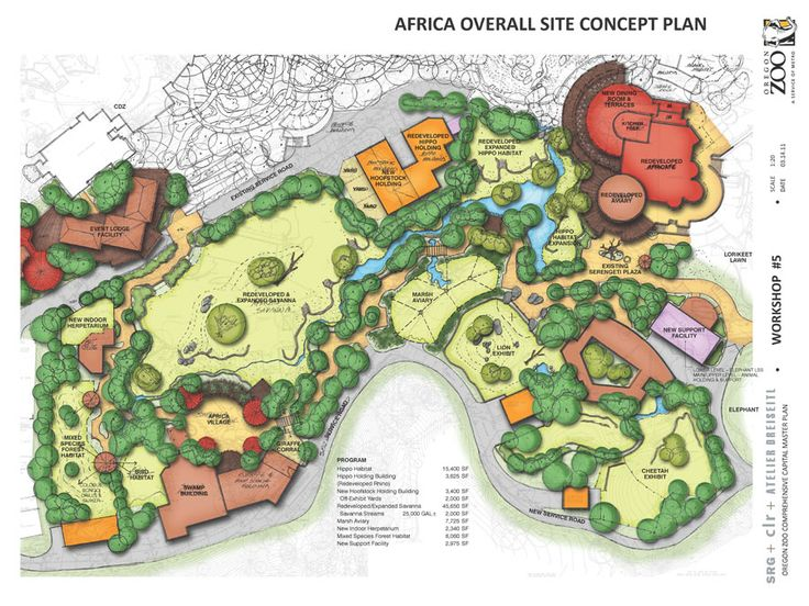 zoo_africa_site_ws5_900.jpg 900×675 pixels
