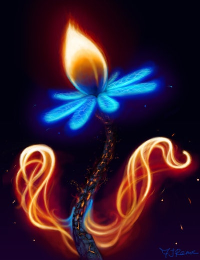 """Neon """"Fire Flower"""" ~=~ [Artistry & Photography by Fr3rdsky]"""