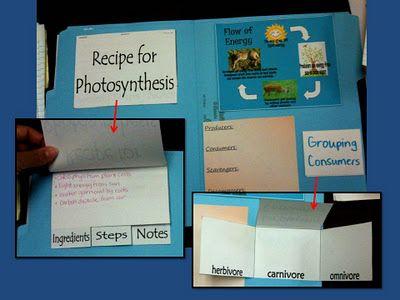 Tons of folder ideas to teach science.
