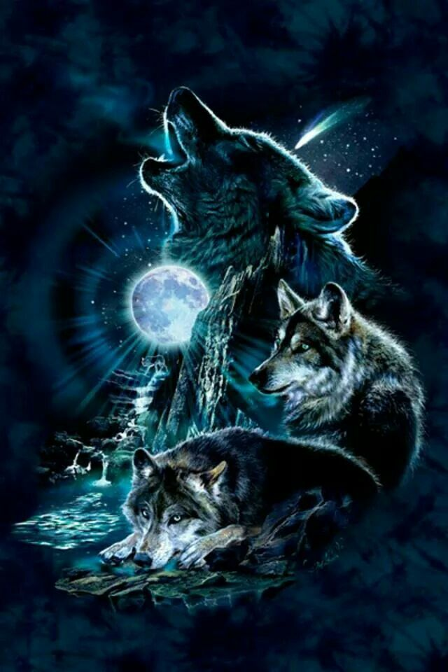 Black Animal Print Wallpaper Pin By Elaine Paske On Wolves Wolf Wallpaper Wolf