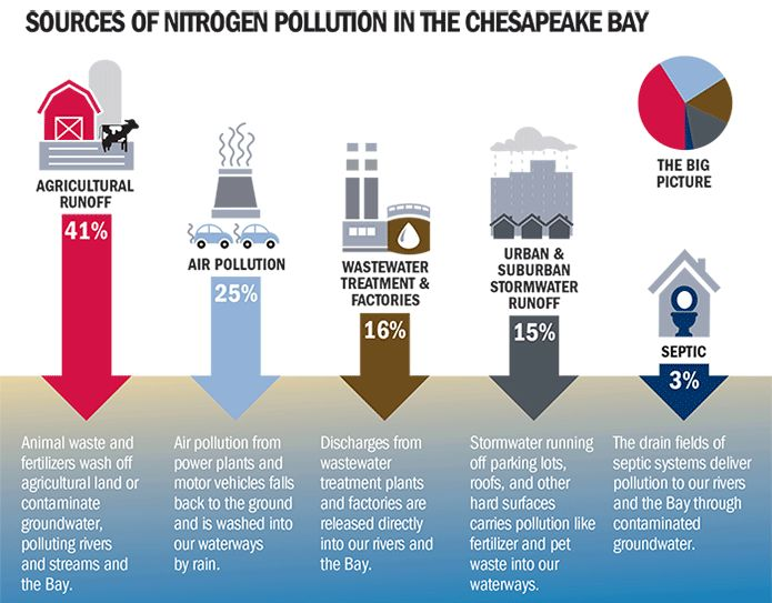 research paper chesapeake bay pollution Research paper improving water quality in the chesapeake bay using payments for ecosystem services for perennial  cbpreducing pollution indicators analysis and.