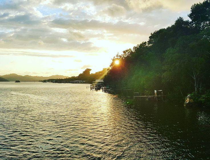 Cruising along River bank @eyeem #eyeem #cruise #river #sunset #scenery by nick.p78