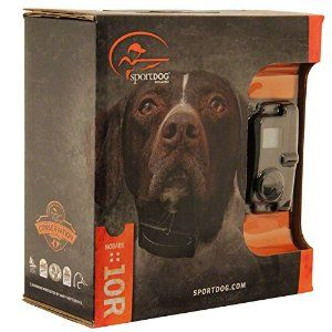 Best Bark Collar Reviews 2016 - Ultimate Buying Guide