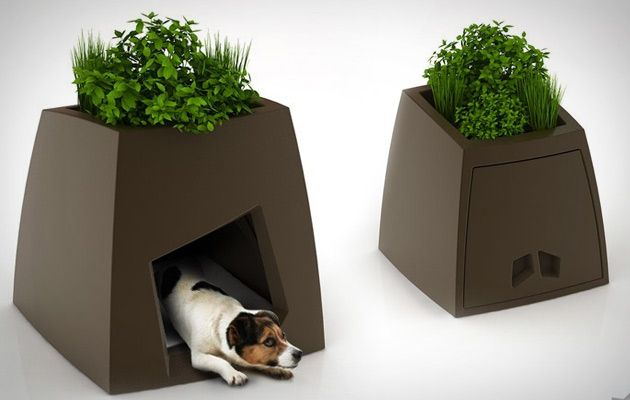Super Modern Dog Kennels