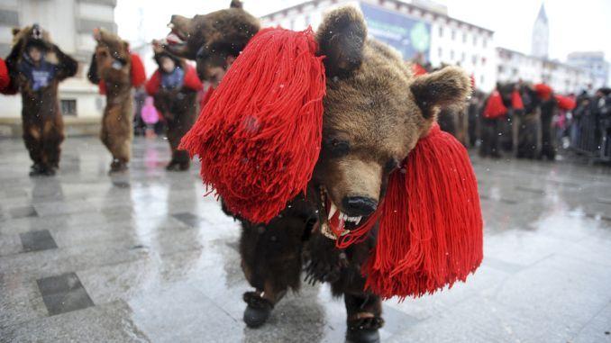 """Jocul Ursului, taiatul porcului si """"pitaratul"""" sunt obceiuri vechi de mii de ani, pe care românii le-au pastrat de la daci. Aceste traditii mai sunt înca respectate, mai mult în sate, unde tinerii si copii încearca sa duca mai departe o mostenire culturala ce dainuie din generatie în generatie. Sfârsitul de an, atunci când se…"""