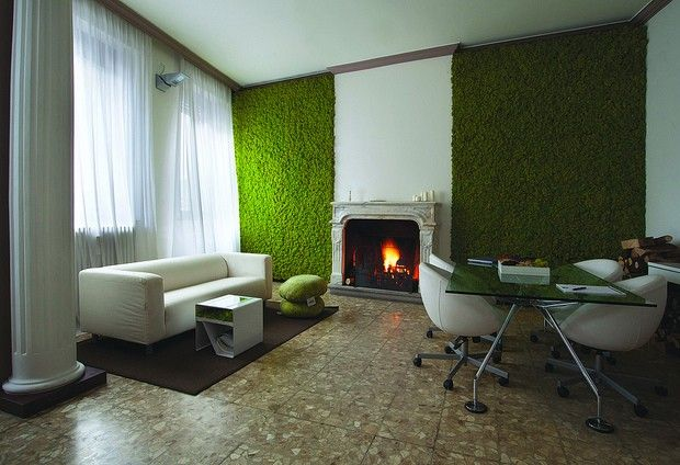 Mech żywą dekoracją salonu