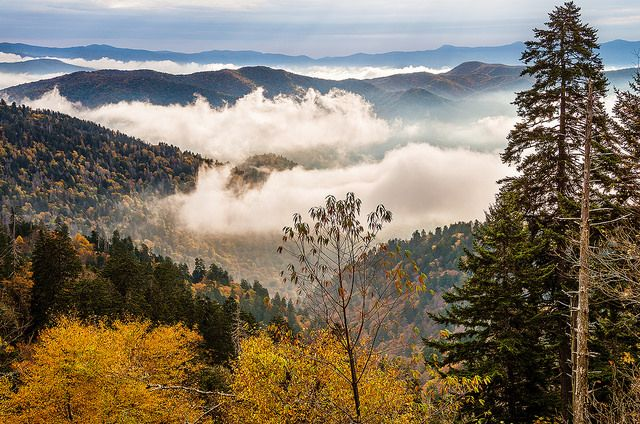 21 Reasons Why You Should Move To Tennessee – RIGHT NOW