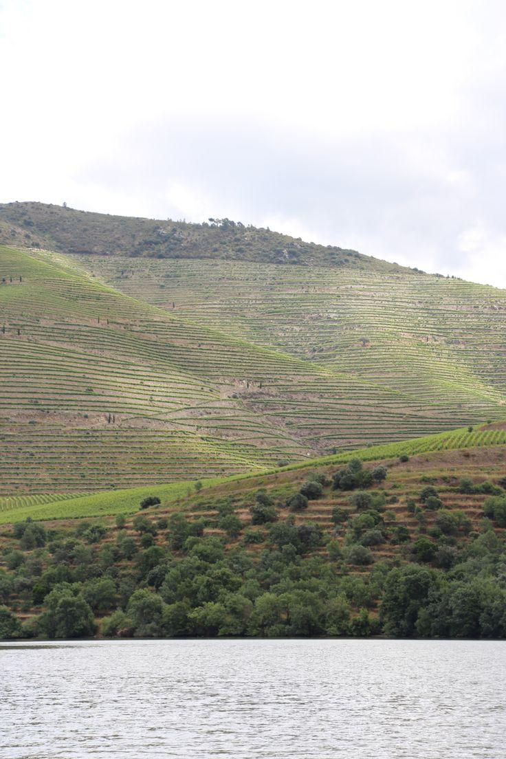 Sur le Douro