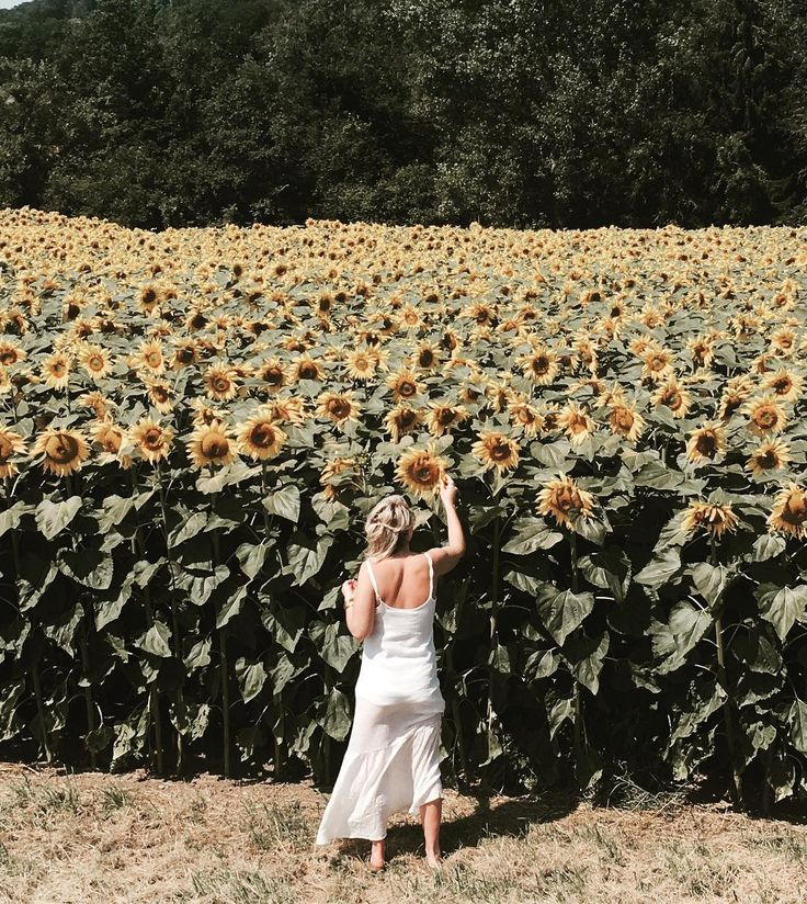 Yes yes and yes to SUNFLOWERS #feelslikesummer  #yellowbeauty  #moudon  #countryside #switzerland #lispthelabel