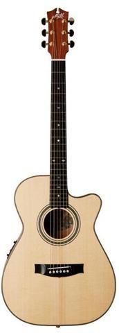 Turramurra Music :: Acoustic Electric Guitars : Maton EBG808C