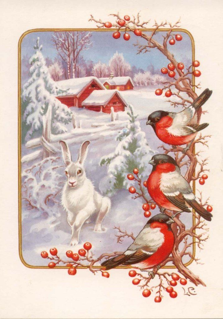 Надписями про, открытки со снегирями к новому году